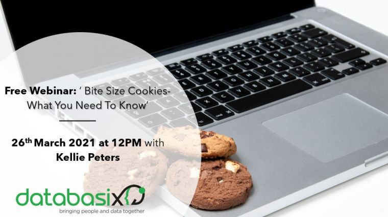 Webinar: 'Bite Size Cookies-What You Need To Know'